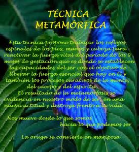 técnica metamórfica texto
