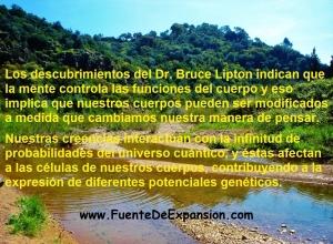 Dr.Bruce Lipton 1